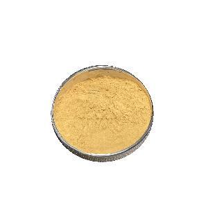 Nutrition  Enhancers  fruit  powder Instant Green Kumquat powder