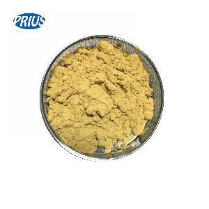 High quality Echinacea purpurea extract 4% cichoric acid powder
