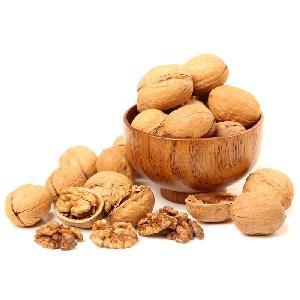 Popular dry Walnuts in dubai whole walnut in shell