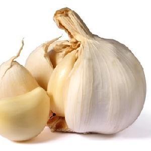 Common Type Unpeeled  Fresh   Garlic   from   China