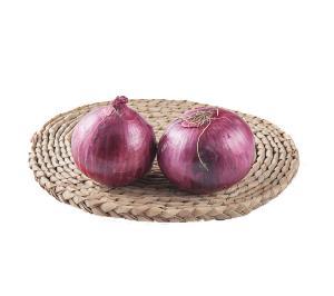 Mesh Bag Packing Red / Yellow Fresh Onion Export To Dubai