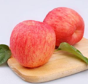 Chinese Good Price Fruits Green Organic Enriched Vitamins C Fresh Apple