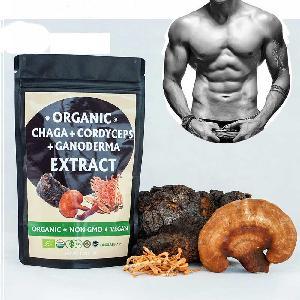 3 In 1 Mixed Natural Herbal Reishi Mushroom Chaga Cordyceps Man Healthy Power Extract Powder