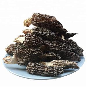 Wholesale Price Dried Fresh Black Morel Mushroom For Sale