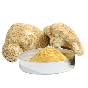Free samples 100% Natural Organic Lion's Mane Mushroom Powder Hericium Erinaceus Extract Powder food Supplements