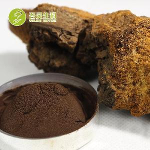 Free Sample Fruit Body Extract Supplements Powder Mushroom  Chaga  Extract