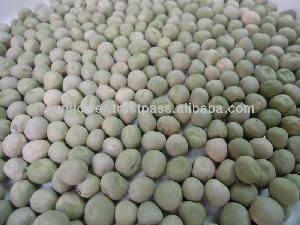 Green peas Dried US origin