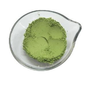 Hot Sale Dehydrated Barley  Grass   Powder  Best Price