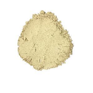 TOP Quality 100% Pure AD Shiitake   Mushroom   Powder  For Food Cooking