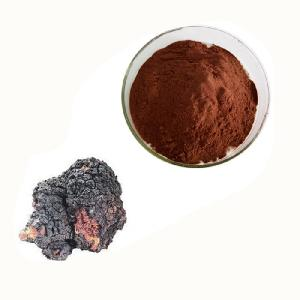 Anti-cancer  chaga   mushroom   extract  polysaccharides instant powder