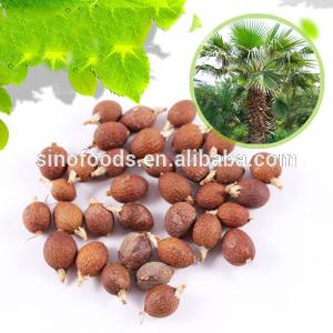 Pu Kui Best Selling Outdoors Trees Planting Chinese Fan Palm