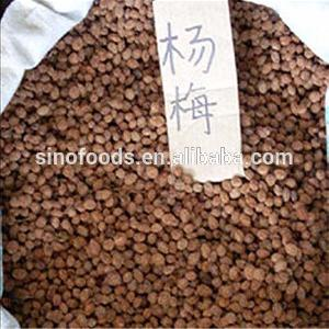 Yang Mei China Supplier Delicious Fruit Buy Bayberry Seeds
