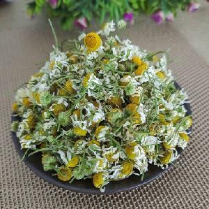 yang gan ju hot selling MOQ 1kg nature fragrance dried chamomile  loose   tea