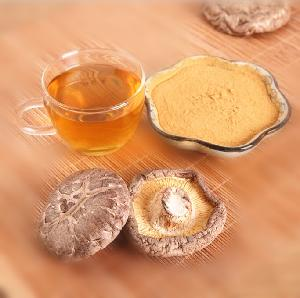 Herb Medicine 10%-50% Polysaccharide chaga mushroom extract powder