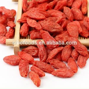 Gou Qi Bottom Price Diabetes Herbal Medicine Chinese Wolfberry