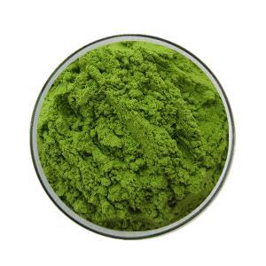 GMP manufacturer  organic   wheat   grass   powder   wheat   grass  juice  powder