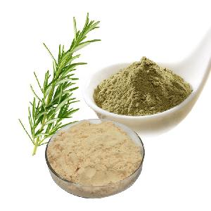Natural Bulk  Rosemary  Extract  Carnosic   Acid