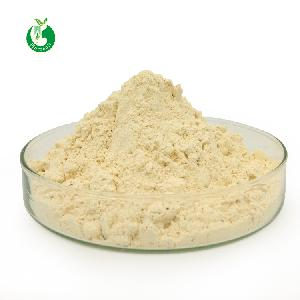 Natural Soy  Extract  Soy Isoflavone  Powder