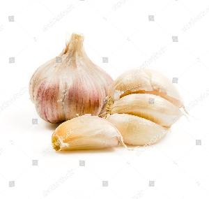 New hot sale bawang putih fresh garlic/ ail alho  indian garlic