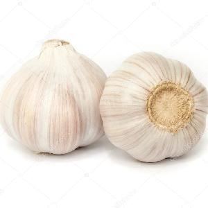 ail / Alho wholesale cheap price  Fresh  Garlic white