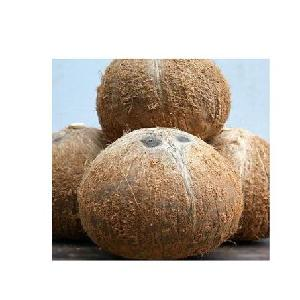 Semi husked coconut with the best price in 2020 +84-845-639-639 (Whatsapp)