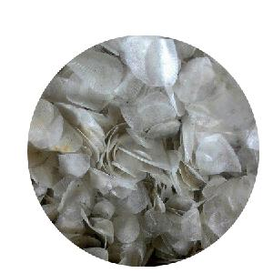 HOT SALE CHEAP FISH SCALE FROM VIETNAM/ HIGH QUALITY FISH SCALES TO EXTRACT COLLAGEN/ Ms. Suny  (+84) 825820245
