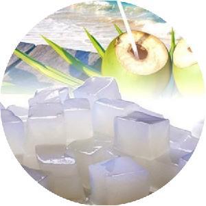 Vietnam Coconut Jelly High Standard Export/ Nata De Coco in Syrup/ Ms. Suny +84 825 820 245