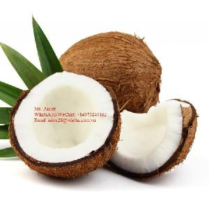 Semi Husked Coconut //Matured Coconut Big size with cheap price from Vietnam //  MS.ANNET +84973249162