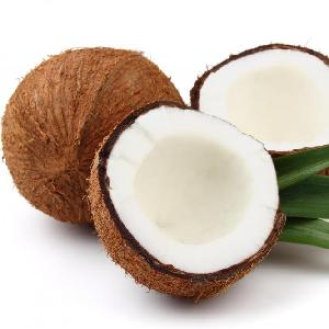 Semi Husked Matured Coconut Vietnam with competitive price