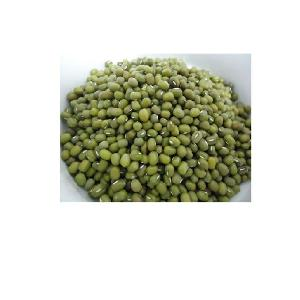 WHOLE  SALE HIGH QUALITY  GREEN   MUNG   BEANS  2020 +84 845 639 639