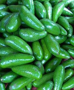 Fresh  Avocado  with Competitive Price - Export 2020