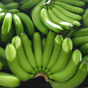 Vietnamese  fresh  banana with high quality for export 2020