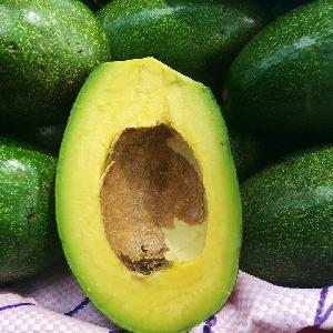 Wow!!! Best Seller - The Fresh Avocado with Lowest Price.