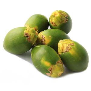 The Fresh Betel Nut with Lowest Price