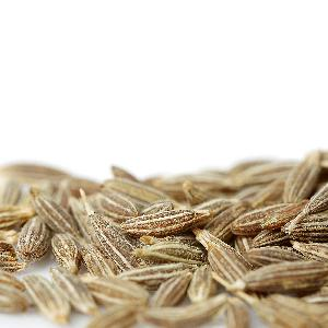 Best Quality Indian Caraway seeds Cumin Seed