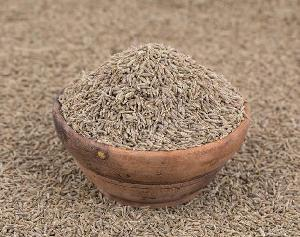 Premium Quality Brown CUMIN SEEDS with Best Price