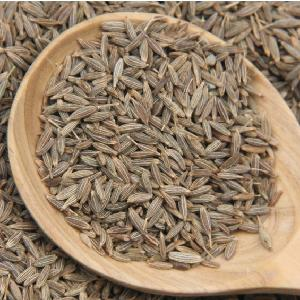 European Quality 99.5 % Purity Indian Cumin Seeds From Unjha