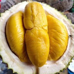 High Hill   Fresh   Durian  D197