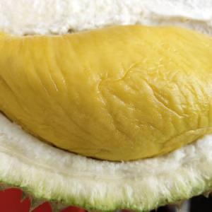 Golden Premium Fresh Durian D197