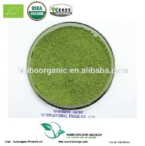 Certified  organic   barley   grass  powder bulk wholesale with best price