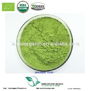 Certified organic wheat grass powder EC NOP