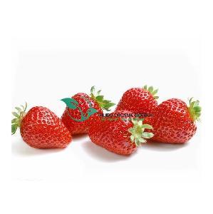 FD Strawberry powder / FD Strawberry granule