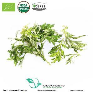 Artemisia Princeps  extract  Artemisinin /  Sweet   Wormwood   Extract  Artemisinin
