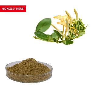 Hongda 5% 10% Honeysuckle Flower  Extract   Chlorogenic   Acid