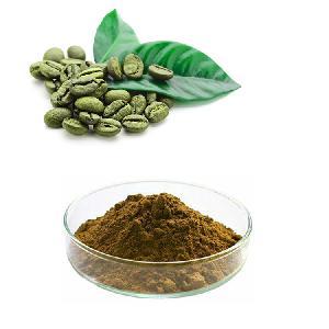 HONGDA Wholesale Pure Chlorogenic Acid Water Soluble bulk powder Green Coffee Bean Extract