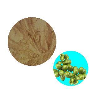 HONGDA Wholesale  Green   Coffee  Bean Extract Powder  Chlorogenic   Acid