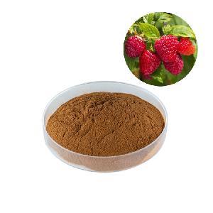 HONGDA Supply Food Grade Red Raspberry Powder Raspberry Ketone Powder Bilberry Extract