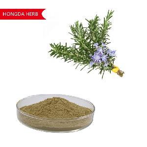 HONGDA 10%  Rosemary  Extract Oil  Carnosic   Acid  For Hair Use