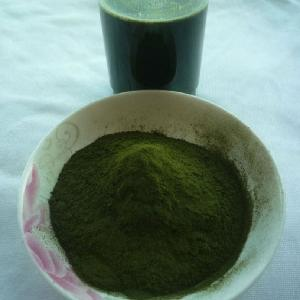 Wheatgrass Powder Natural Wheat Grass Powder Organic Wheat Grass Powder