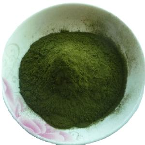 Organic Wheatgrass Powder Wholesale Wheat Grass Powder Organic Wheat Grass Powder